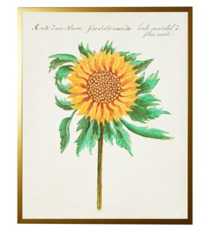 Vintage bookplate with sunflower