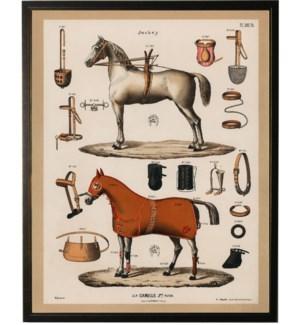 Horse bookplate B