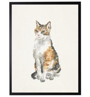 Whole body calico cat