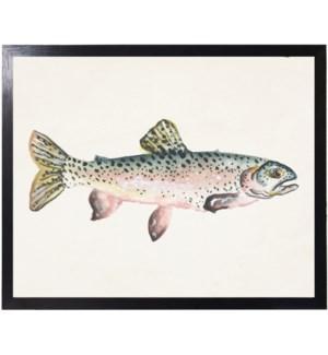 Watercolor camping Fish C