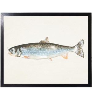 Watercolor camping Fish D