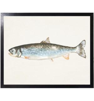Watercolor camping Fish D