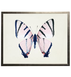 Light pink with navy blue body butterfly