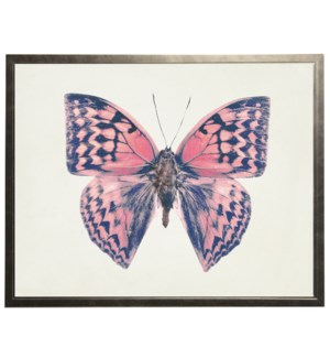 Pink with blue butterfly