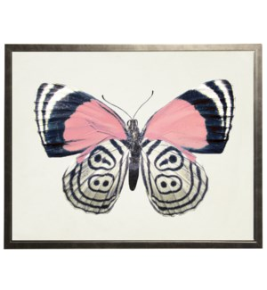 Pink with black designs butterfly