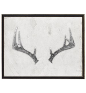 Antler A black and white