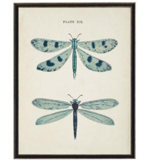Blue dragonflies bookplate