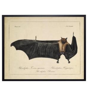 Vintage bat bookplate
