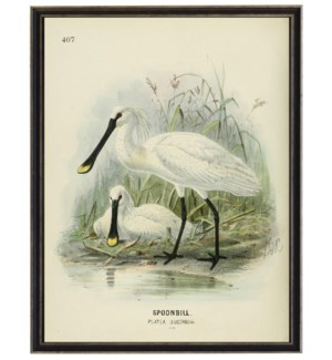 Vintage Waterbird bookplate