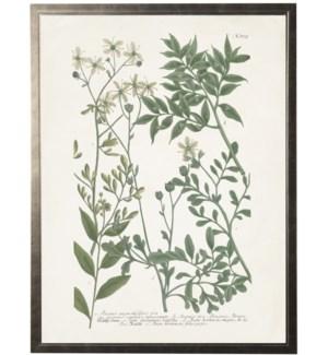 Green multi leaves on light bkgd