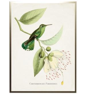 Hummingbird on leaves with flowers