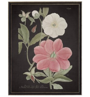 Leaves w/pink flowers on dark bkgd