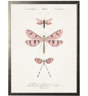 Pink dragonflies bookplate