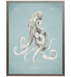 Octopus on spa background