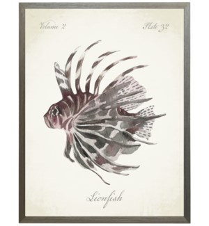 Lion Fish on natural background
