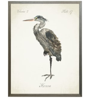 Heron on natural background