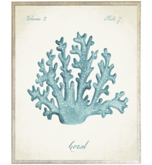 Blue coral on natural background