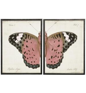 Pink split butterfly