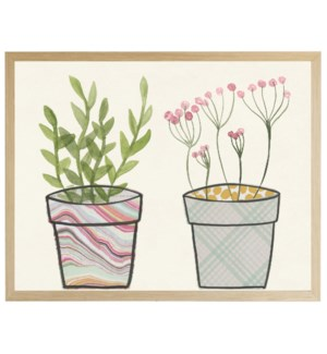 Potted plants A