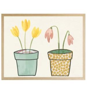 Potted plants C