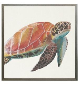 watercolor sea turtle
