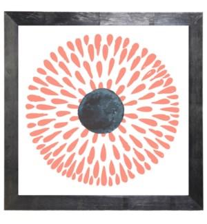 Coral and black circle