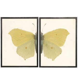 Diptych Yellow Butterfly