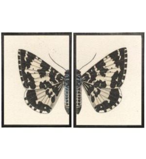 Diptych Black and White Butterfly