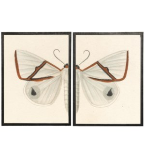 Diptych White and Red Butterfly