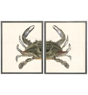 Diptych Green and Gray Crab
