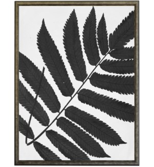 18X24 2400-05 ZH Black Cropped Leaves