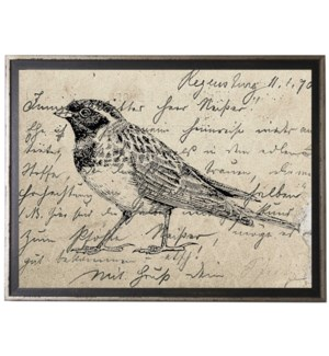Bird One on calligraphy postcard background