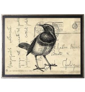 Bird Four on calligraphy postcard background