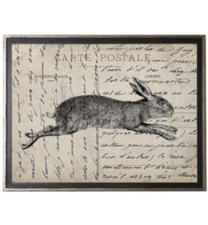 Bunny on calligraphy postcard background
