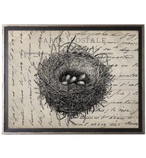Bird's Nest on calligraphy postcard background