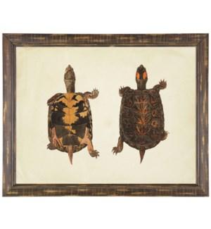 Pair of turtles print