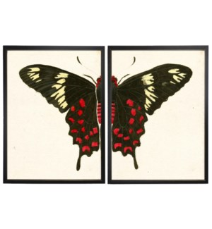 Diptych Red and White Butterfly