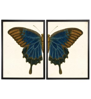Diptych Blue and Brown Butterfly