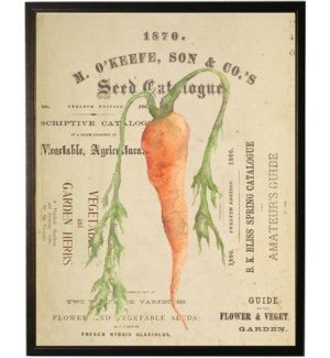 Watercolor Carrot on title page
