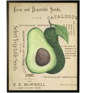Watercolor Avocado on title page