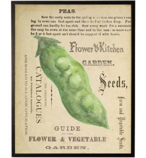 Watercolor Peas on title page