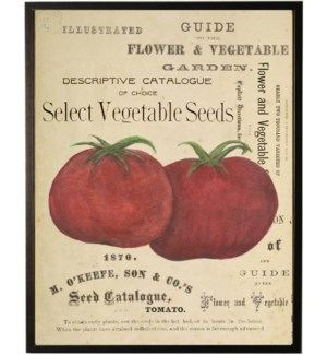 Watercolor Tomatoes on title page