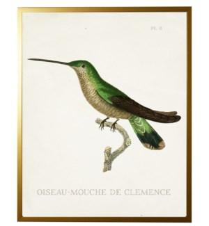 Hummingbird Plate 8 (dk green) on white