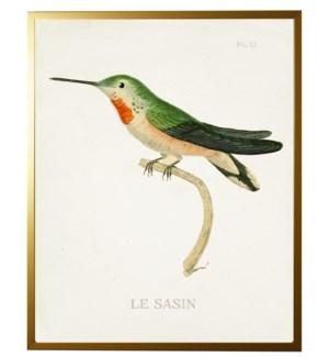 Hummingbird Plate 13 on white