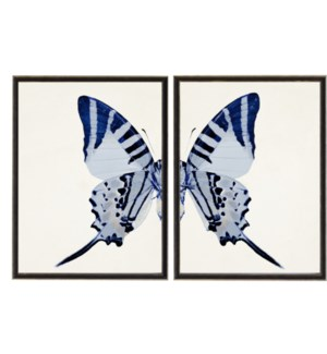 Diptych Blue Butterfly with Tail Left