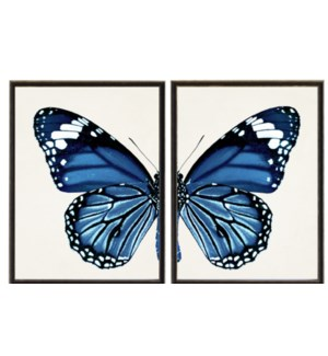 Diptych Navy Butterfly (Left)