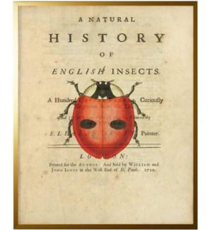 Ladybug on titlepage