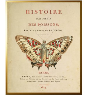 Butterfly on title page