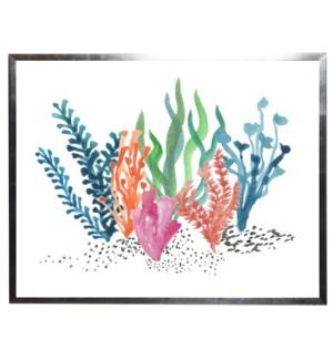 Multicolored coral