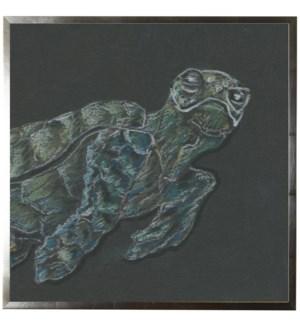 Pastel Sea turtle on black